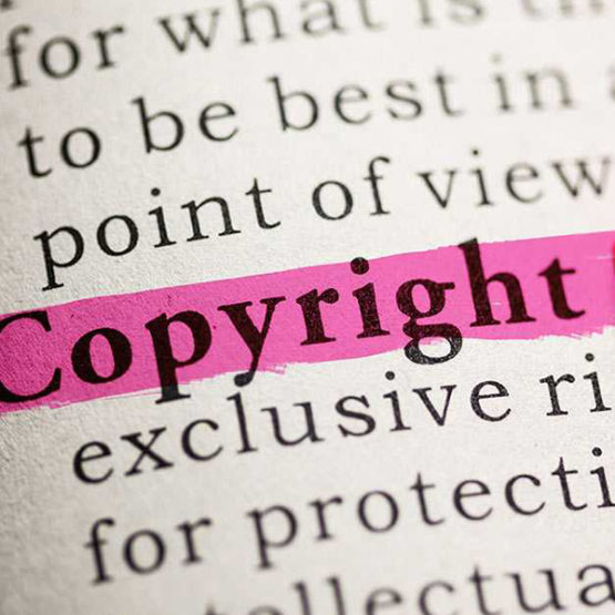 The U.S. Copyright Act grants the author of literary property such as a book, video game, screenplay, motion picture, play, etc., the exclusive right to use his creation.